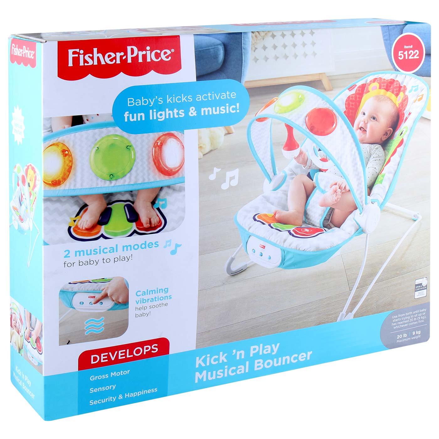 Fisher Price BG RFF Newborn/Toddler Rocker 2